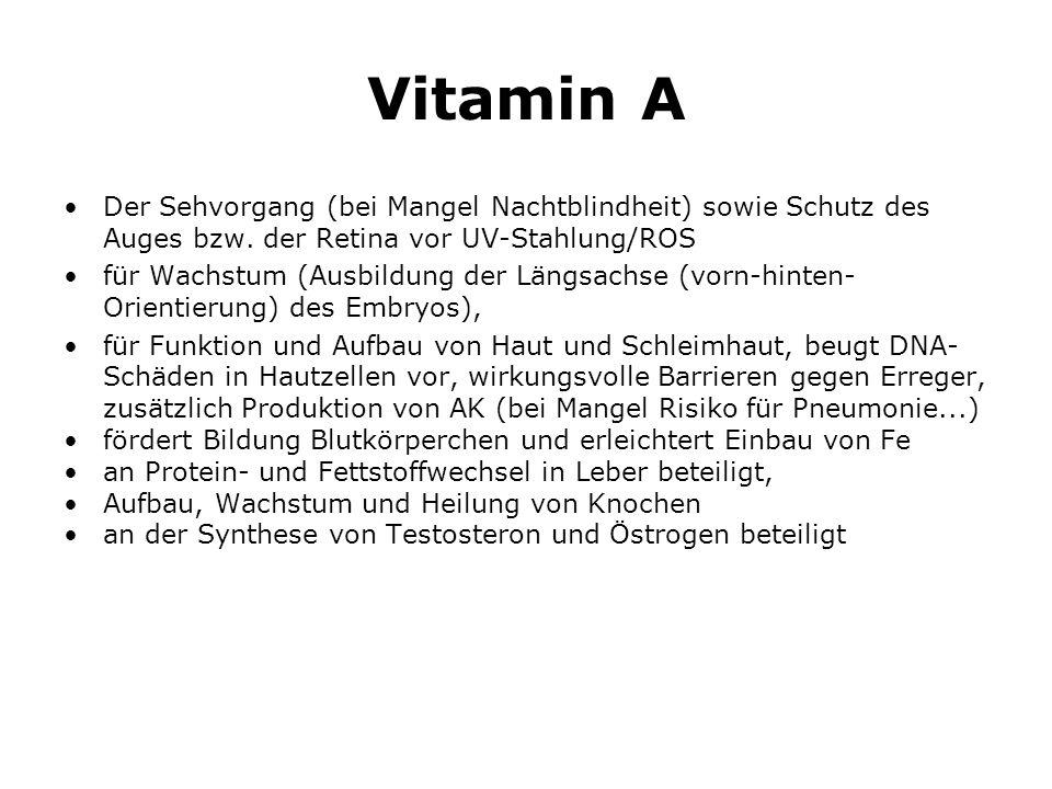 Vitamin A Der Sehvorgang (bei Mangel Nachtblindheit) sowie Schutz des Auges bzw.