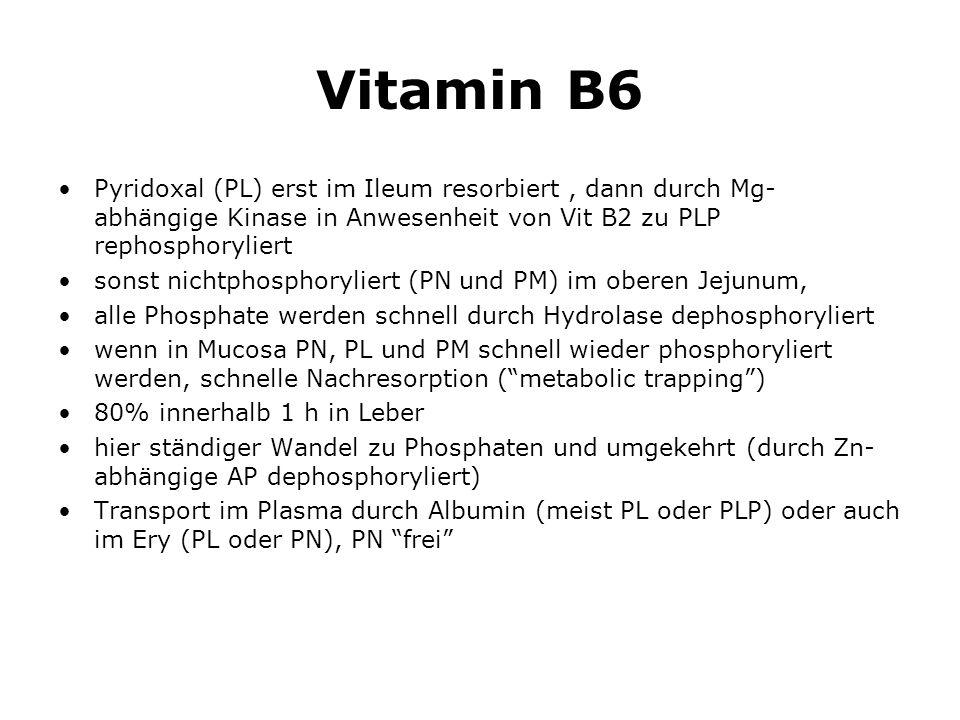Vitamin B6 Pyridoxal (PL) erst im Ileum resorbiert, dann durch Mg- abhängige Kinase in Anwesenheit von Vit B2 zu PLP rephosphoryliert sonst nichtphosphoryliert (PN und PM) im oberen Jejunum, alle Phosphate werden schnell durch Hydrolase dephosphoryliert wenn in Mucosa PN, PL und PM schnell wieder phosphoryliert werden, schnelle Nachresorption (metabolic trapping) 80% innerhalb 1 h in Leber hier ständiger Wandel zu Phosphaten und umgekehrt (durch Zn- abhängige AP dephosphoryliert) Transport im Plasma durch Albumin (meist PL oder PLP) oder auch im Ery (PL oder PN), PN frei