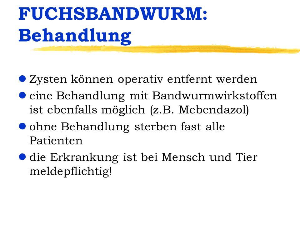 FUCHSBANDWURM: Behandlung lZysten können operativ entfernt werden leine Behandlung mit Bandwurmwirkstoffen ist ebenfalls möglich (z.B. Mebendazol) loh