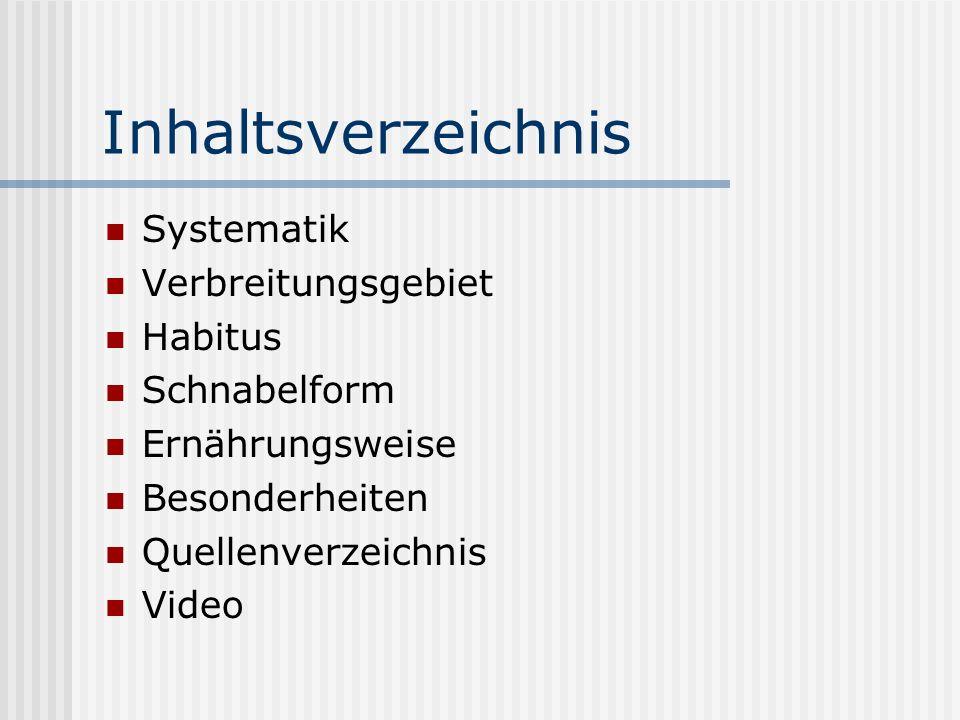 Inhaltsverzeichnis Systematik Verbreitungsgebiet Habitus Schnabelform Ernährungsweise Besonderheiten Quellenverzeichnis Video