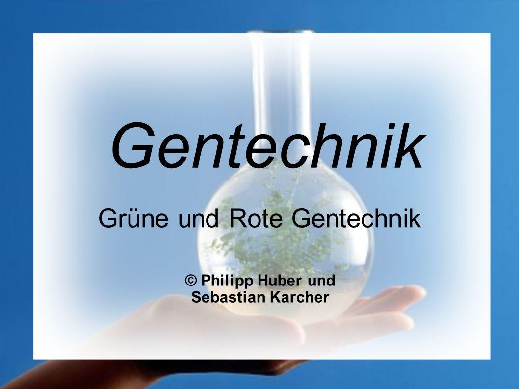 Gentechnik Grüne und Rote Gentechnik © Philipp Huber und Sebastian Karcher