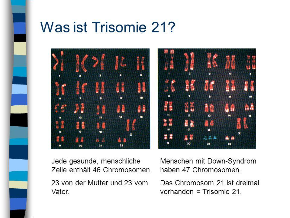 Was ist Trisomie 21? Jede gesunde, menschliche Zelle enthält 46 Chromosomen. 23 von der Mutter und 23 vom Vater. Menschen mit Down-Syndrom haben 47 Ch