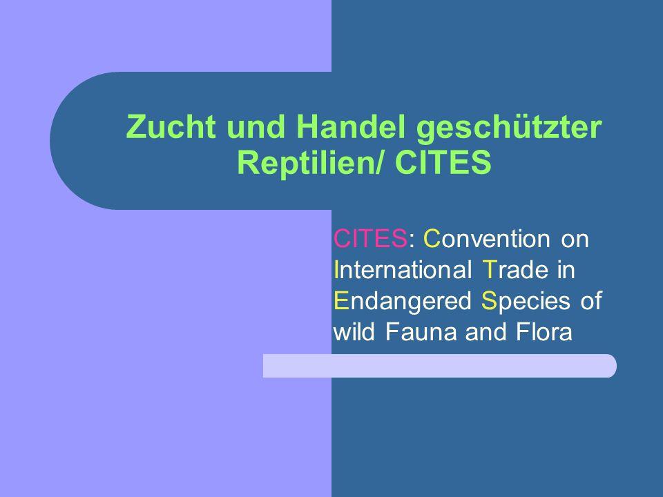 Zucht und Handel geschützter Reptilien/ CITES CITES: Convention on International Trade in Endangered Species of wild Fauna and Flora