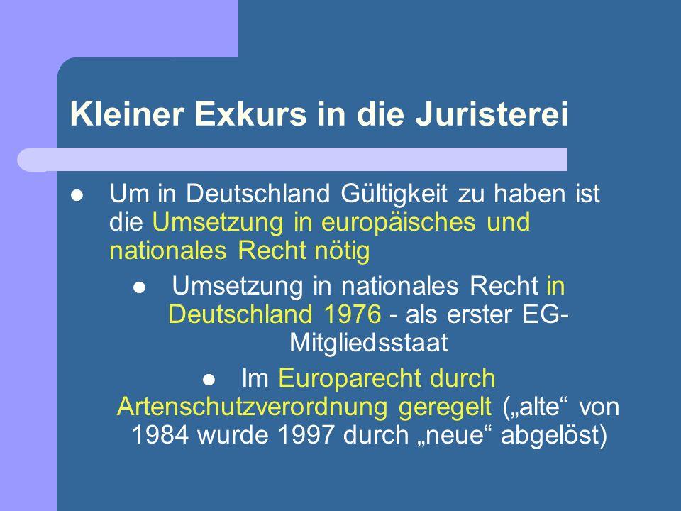 Kleiner Exkurs in die Juristerei Um in Deutschland Gültigkeit zu haben ist die Umsetzung in europäisches und nationales Recht nötig Umsetzung in natio