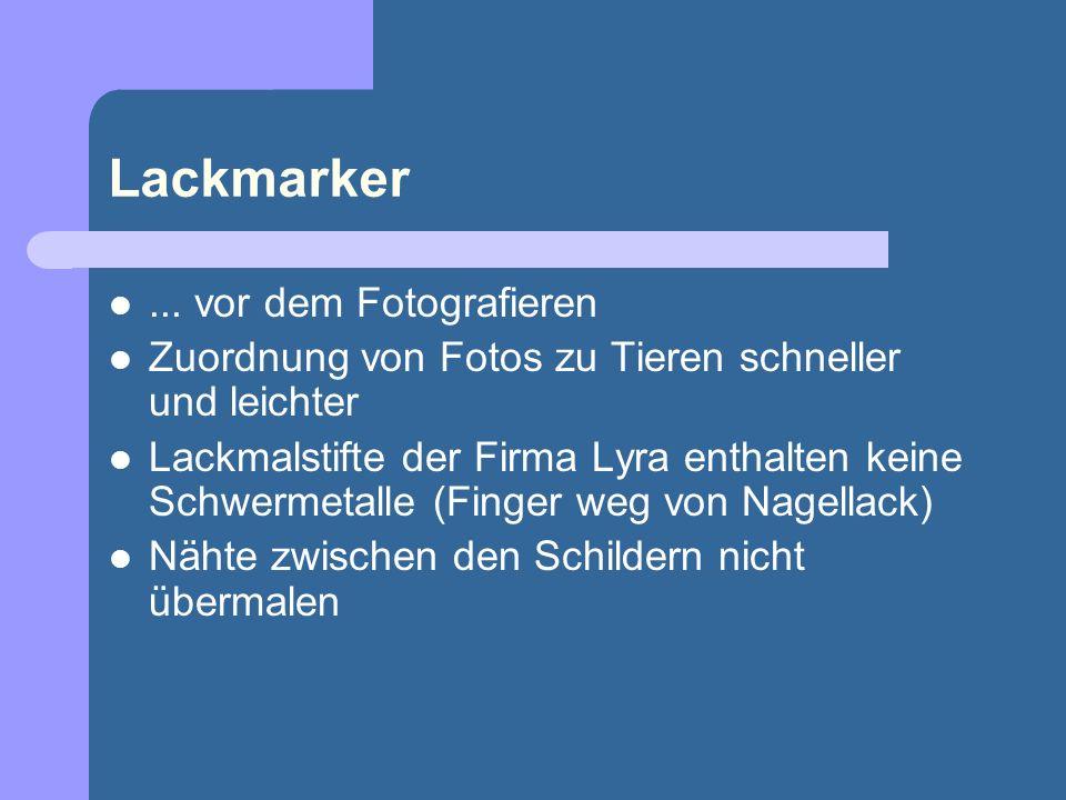 Lackmarker... vor dem Fotografieren Zuordnung von Fotos zu Tieren schneller und leichter Lackmalstifte der Firma Lyra enthalten keine Schwermetalle (F