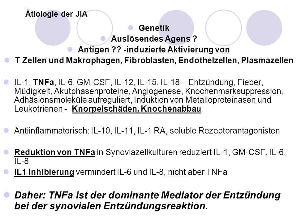Ätiologie der JIA Genetik Auslösendes Agens ? Antigen ?? -induzierte Aktivierung von T Zellen und Makrophagen, Fibroblasten, Endothelzellen, Plasmazel