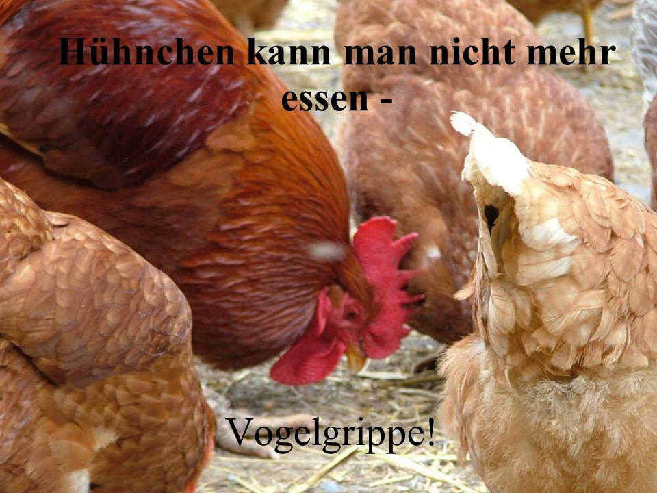 Salmonellen! Eier kann man nicht mehr essen -