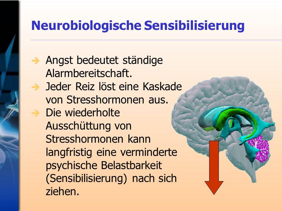 Neurobiologische Sensibilisierung Angst bedeutet ständige Alarmbereitschaft. Jeder Reiz löst eine Kaskade von Stresshormonen aus. Die wiederholte Auss