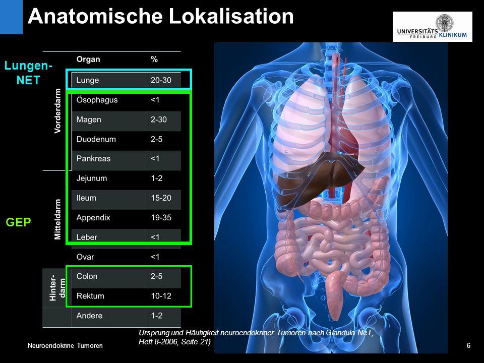 6Neuroendokrine Tumoren6 Ursprung und Häufigkeit neuroendokriner Tumoren nach Glandula NeT, Heft 8-2006, Seite 21) GEP Lungen- NET 6 Anatomische Lokalisation