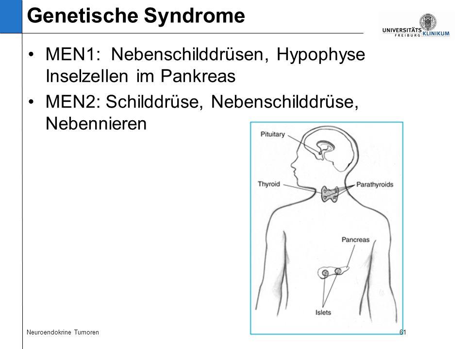 61 MEN1: Nebenschilddrüsen, Hypophyse Inselzellen im Pankreas MEN2: Schilddrüse, Nebenschilddrüse, Nebennieren Neuroendokrine Tumoren61 Genetische Syndrome