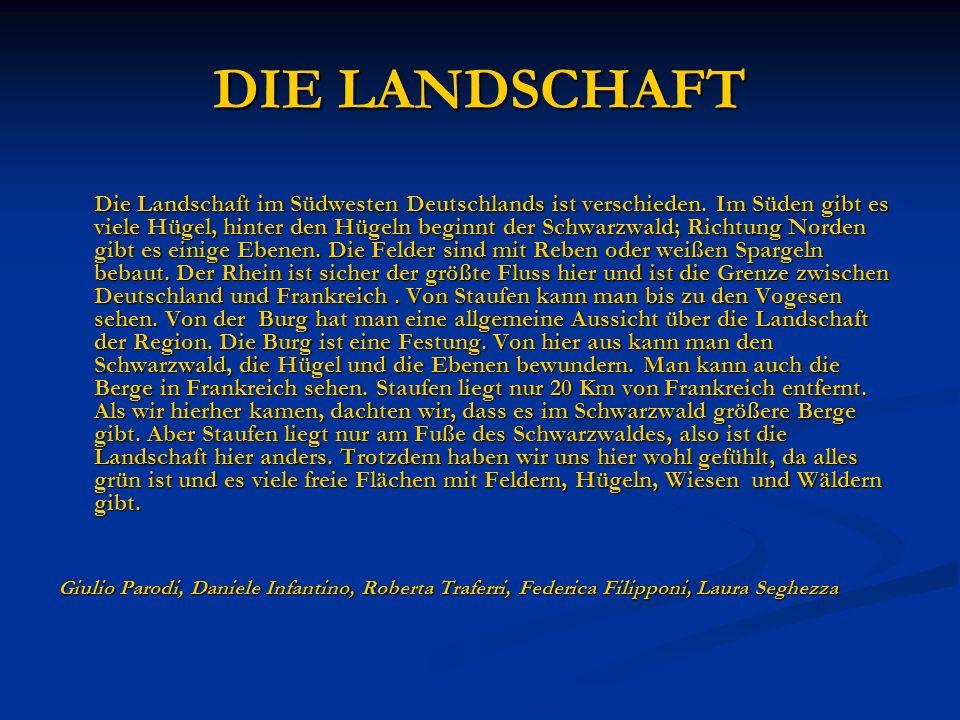 DIE LANDSCHAFT Die Landschaft im Südwesten Deutschlands ist verschieden. Im Süden gibt es viele Hügel, hinter den Hügeln beginnt der Schwarzwald; Rich