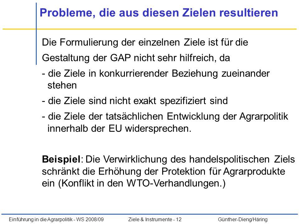 Einführung in die Agrarpolitik - WS 2008/09Ziele & Instrumente - 12 Günther-Dieng/Häring Probleme, die aus diesen Zielen resultieren Die Formulierung