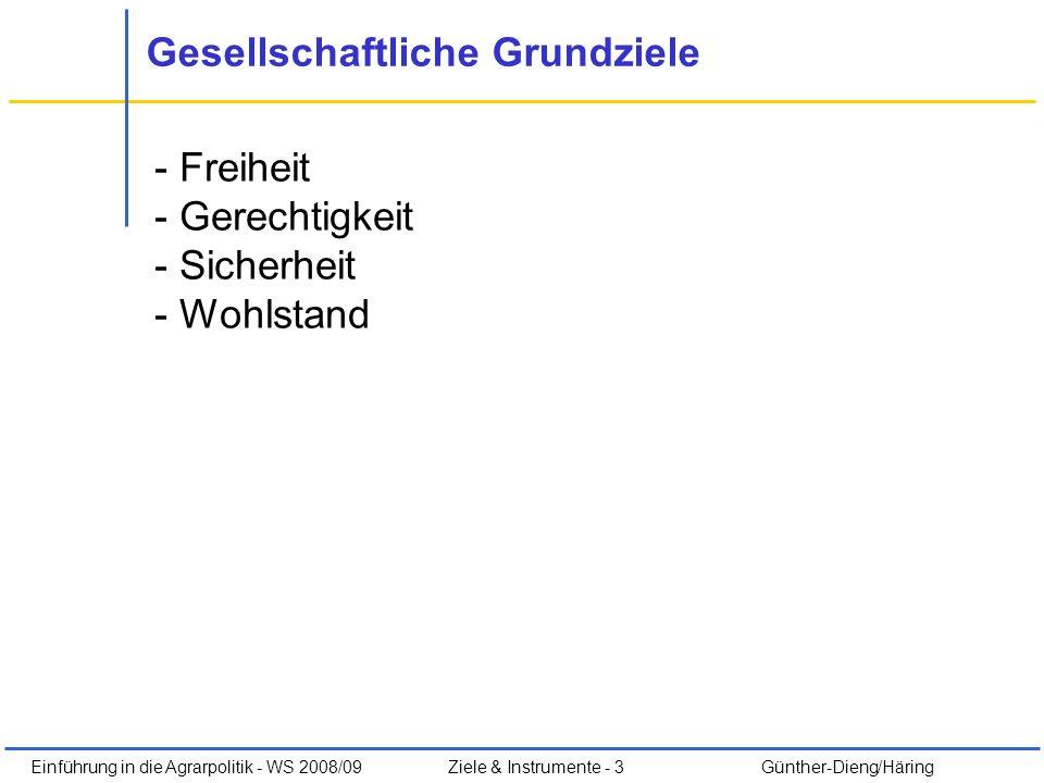 Einführung in die Agrarpolitik - WS 2008/09Ziele & Instrumente - 3 Günther-Dieng/Häring Gesellschaftliche Grundziele - Freiheit - Gerechtigkeit - Sich