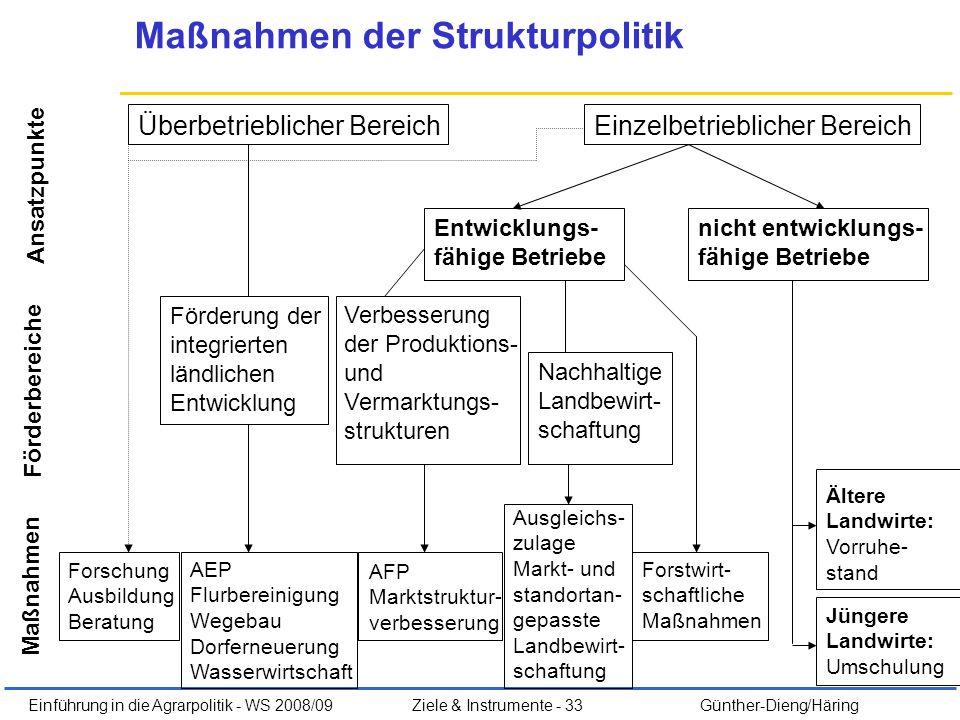 Einführung in die Agrarpolitik - WS 2008/09Ziele & Instrumente - 33 Günther-Dieng/Häring Maßnahmen der Strukturpolitik Überbetrieblicher BereichEinzel
