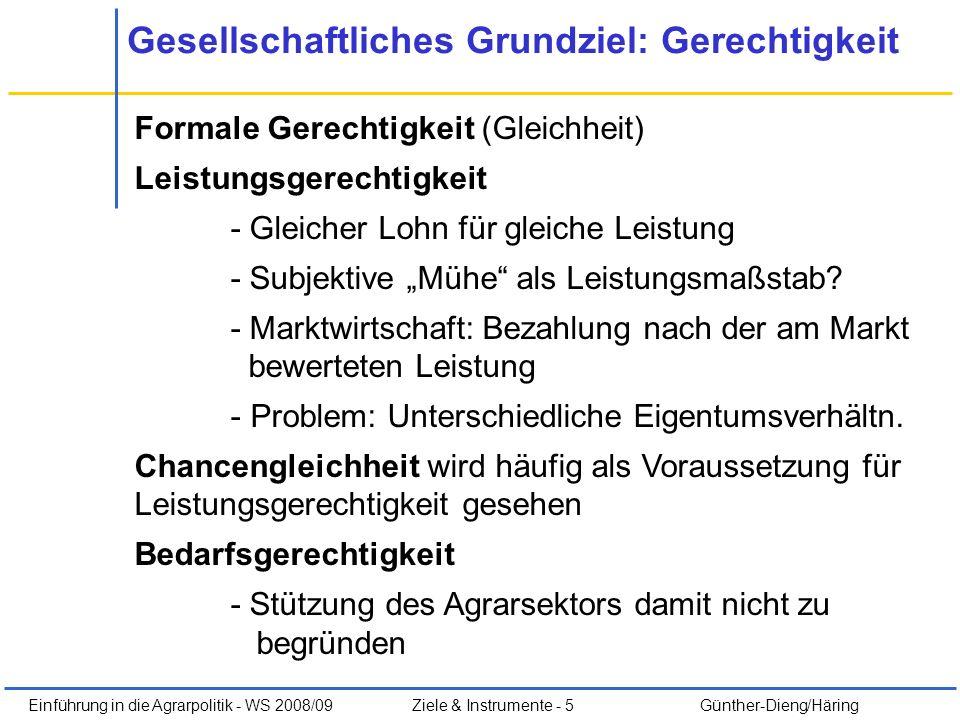 Einführung in die Agrarpolitik - WS 2008/09Ziele & Instrumente - 5 Günther-Dieng/Häring Gesellschaftliches Grundziel: Gerechtigkeit Formale Gerechtigk