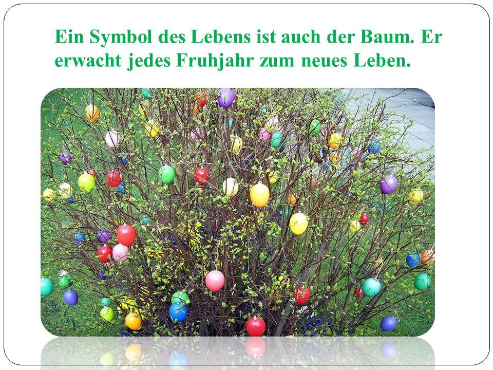 Ein Symbol des Lebens ist auch der Baum. Er erwacht jedes Fruhjahr zum neues Leben.