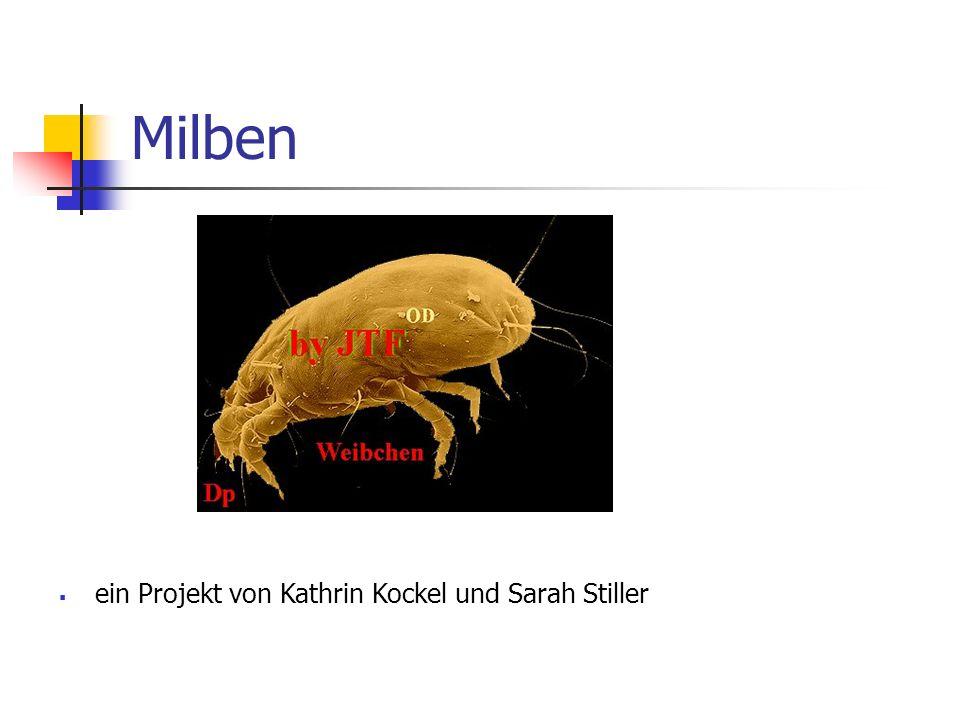 Milben ein Projekt von Kathrin Kockel und Sarah Stiller