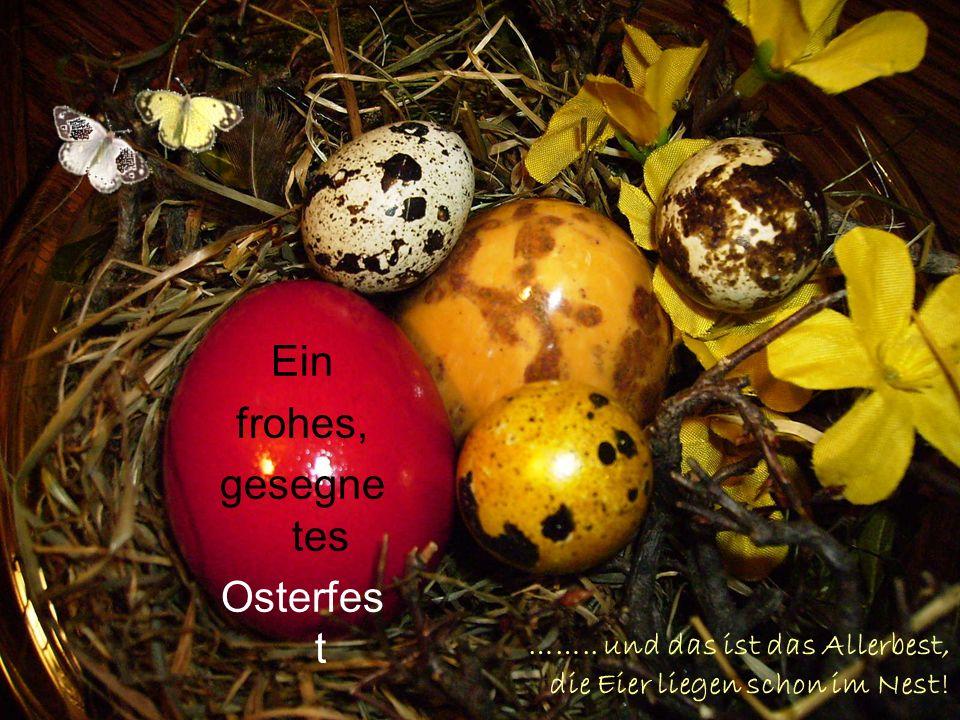 …….. und das ist das Allerbest, die Eier liegen schon im Nest! Ein frohes, gesegne tes Osterfes t