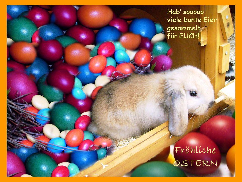 Hab sooooo viele bunte Eier gesammelt, für EUCH! Fröhliche OSTERN