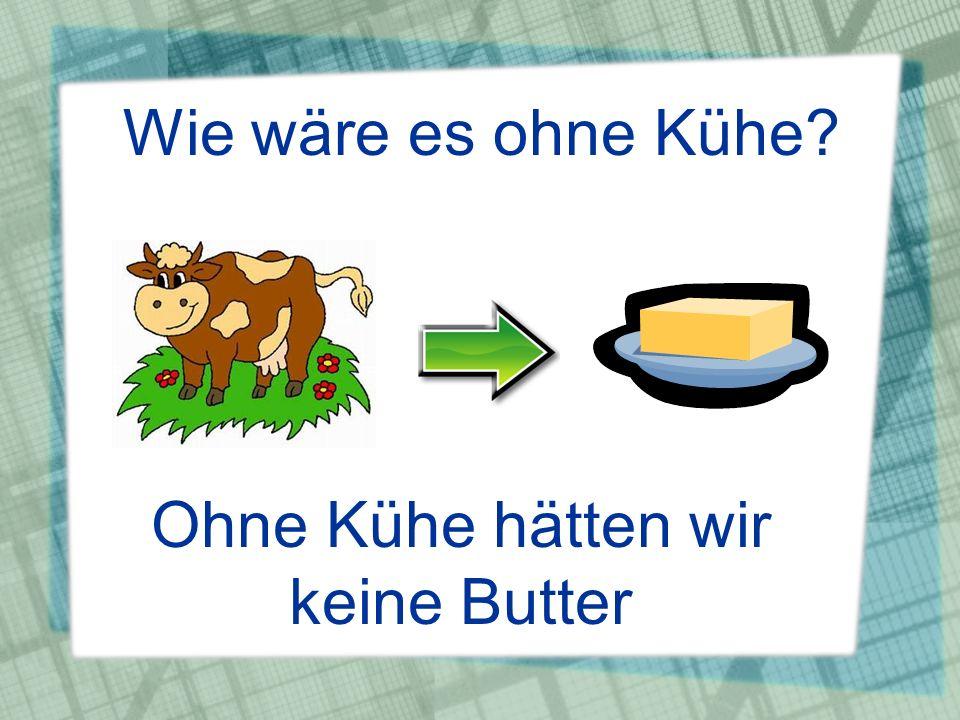 Wie wäre es ohne Kühe? Ohne Kühe hätten wir keine Butter