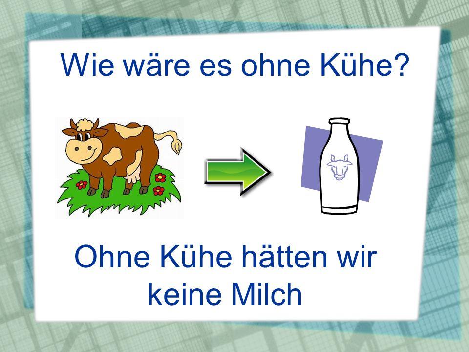 Wie wäre es ohne Kühe? Ohne Kühe hätten wir keine Milch