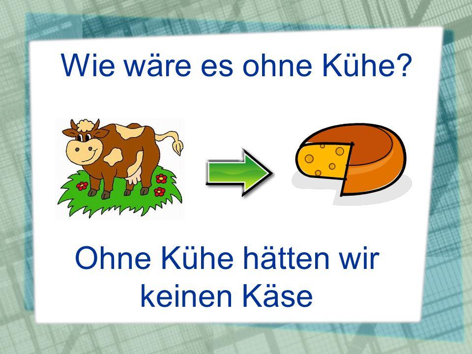 Wie wäre es ohne Kühe? Ohne Kühe hätten wir keinen Käse