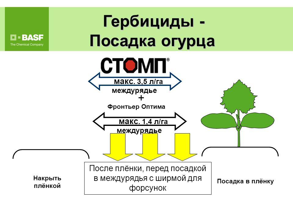 CTOMП + Centium (NP)