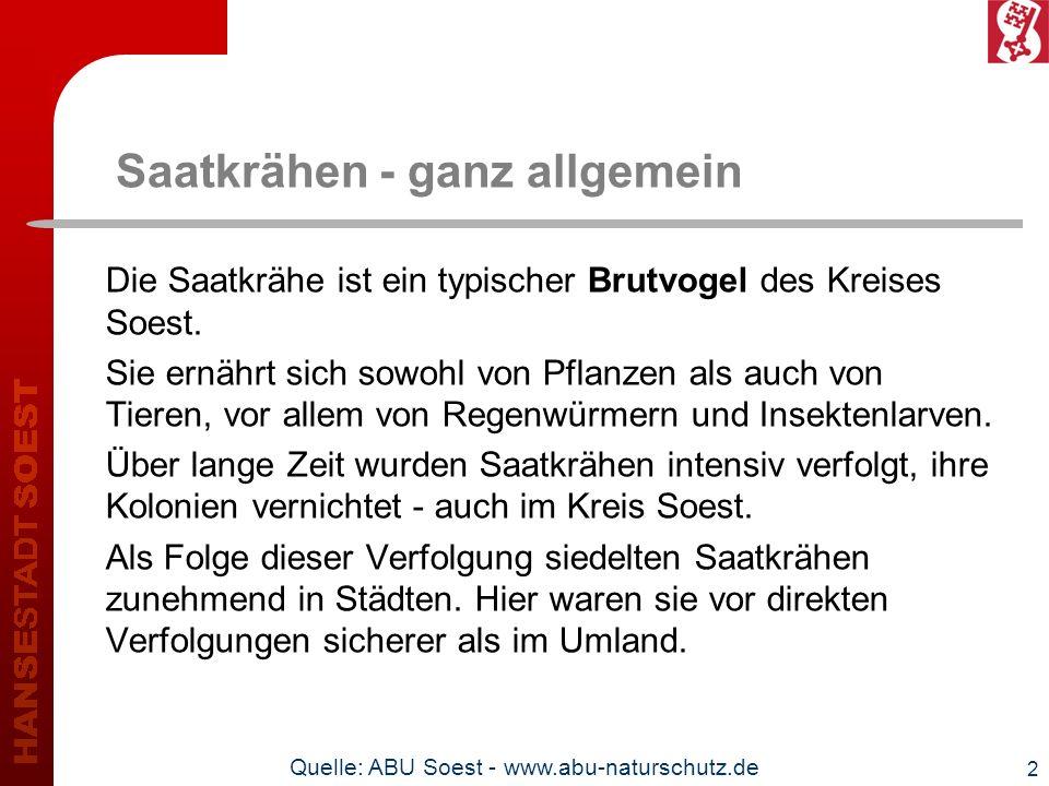 3 Saatkrähen und Naturschutz In Deutschland ist die Saatkrähe (Corvus frugilegus) eine gesetzlich besonders geschützte Vogelart.