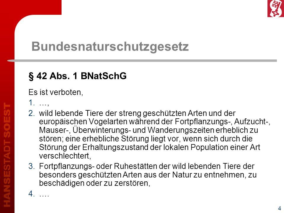 4 Bundesnaturschutzgesetz § 42 Abs. 1 BNatSchG Es ist verboten, 1.…, 2.wild lebende Tiere der streng geschützten Arten und der europäischen Vogelarten