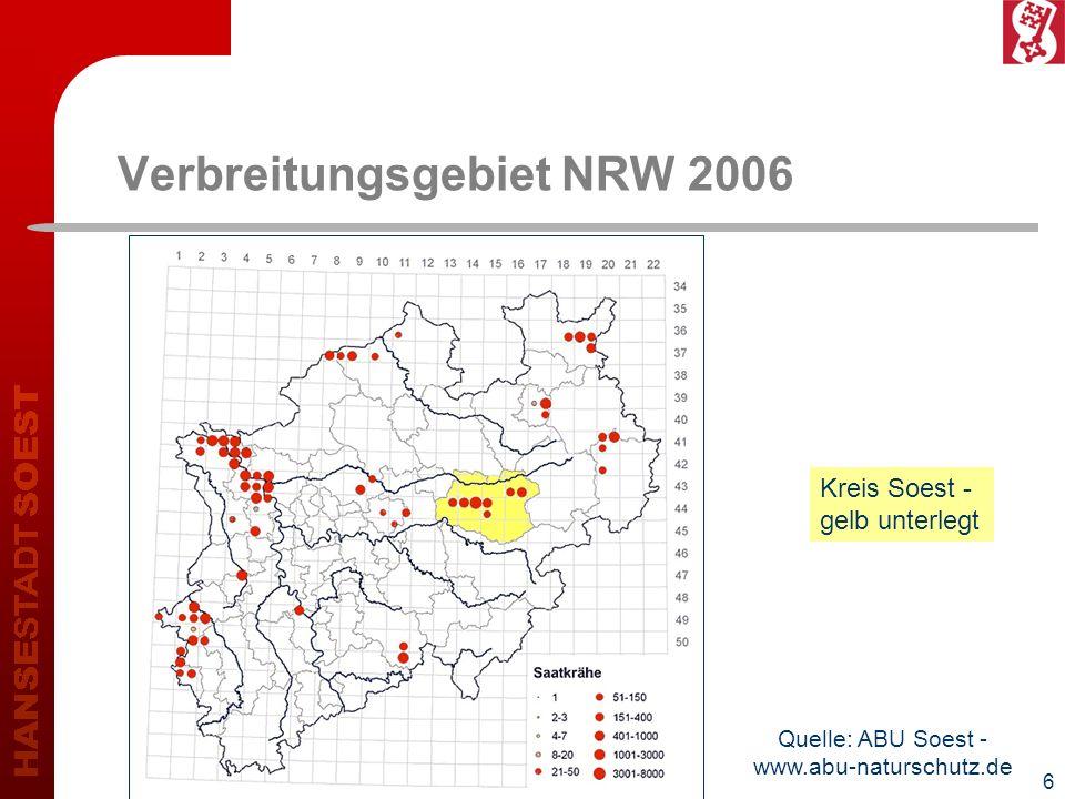7 Entwicklung in Kreis und Stadt Soest 200020072008Saatkrähenpaare 5951.3091.656+ 178 %Kreis Soest insgesamt 5431.0531.174+ 116 % Stadt Soest insgesamt (inkl.
