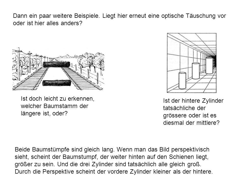 Dann ein paar weitere Beispiele. Liegt hier erneut eine optische Täuschung vor oder ist hier alles anders? Ist doch leicht zu erkennen, welcher Baumst
