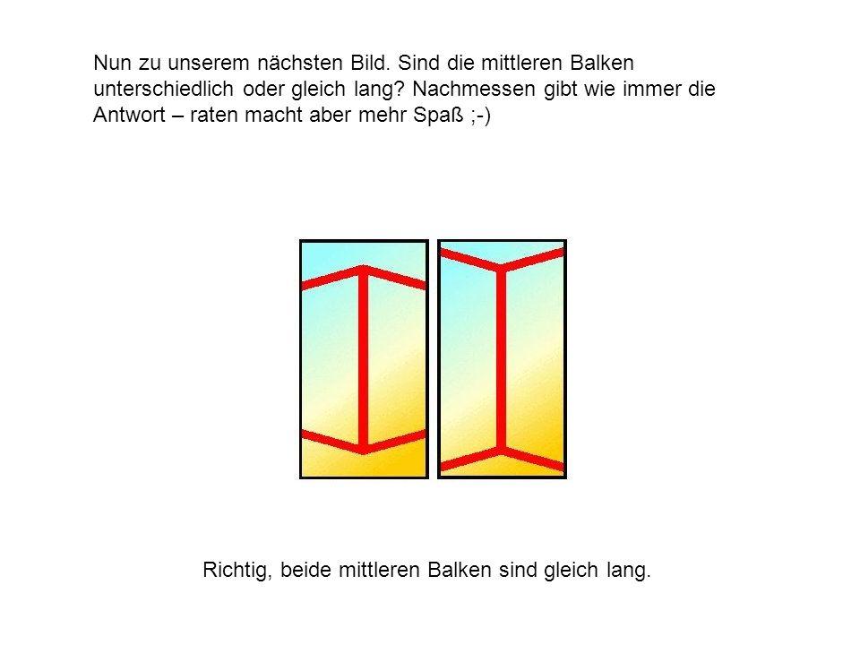Nun zu unserem nächsten Bild. Sind die mittleren Balken unterschiedlich oder gleich lang? Nachmessen gibt wie immer die Antwort – raten macht aber meh