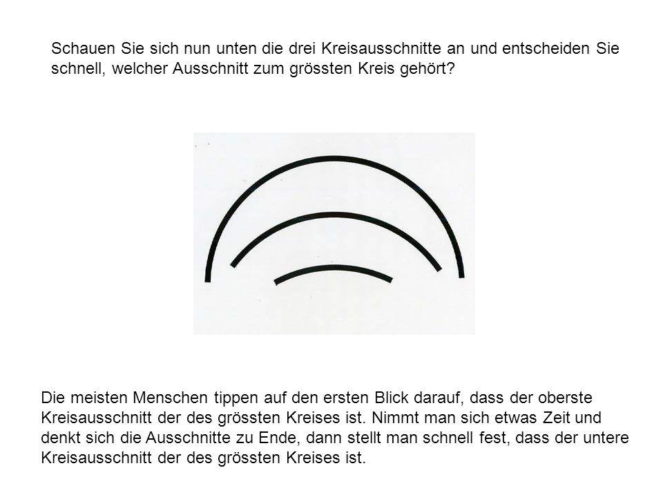 Schauen Sie sich nun unten die drei Kreisausschnitte an und entscheiden Sie schnell, welcher Ausschnitt zum grössten Kreis gehört? Die meisten Mensche