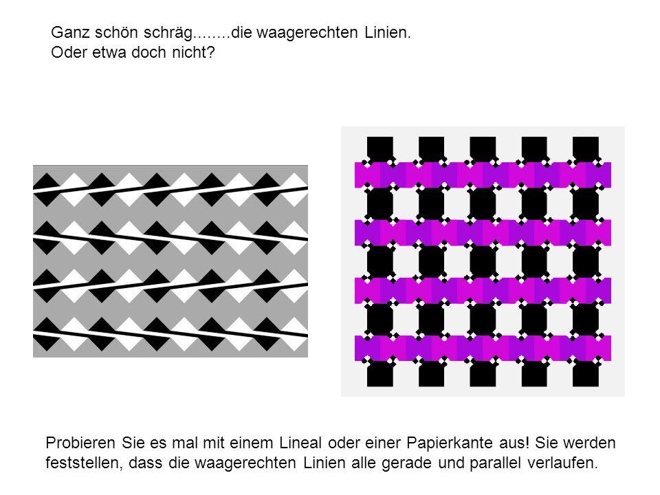 Ganz schön schräg........die waagerechten Linien. Oder etwa doch nicht? Probieren Sie es mal mit einem Lineal oder einer Papierkante aus! Sie werden f