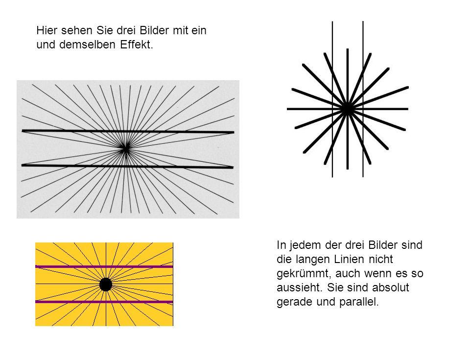 Hier sehen Sie drei Bilder mit ein und demselben Effekt. In jedem der drei Bilder sind die langen Linien nicht gekrümmt, auch wenn es so aussieht. Sie