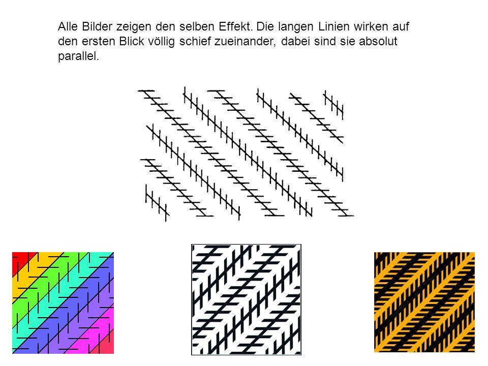 Alle Bilder zeigen den selben Effekt. Die langen Linien wirken auf den ersten Blick völlig schief zueinander, dabei sind sie absolut parallel.