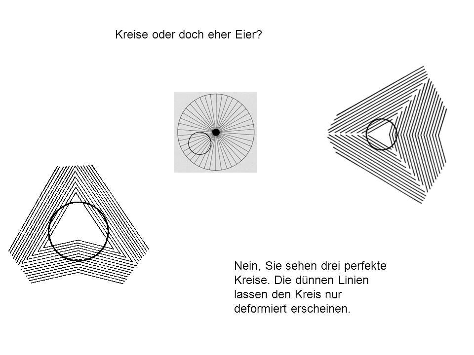 Kreise oder doch eher Eier? Nein, Sie sehen drei perfekte Kreise. Die dünnen Linien lassen den Kreis nur deformiert erscheinen.