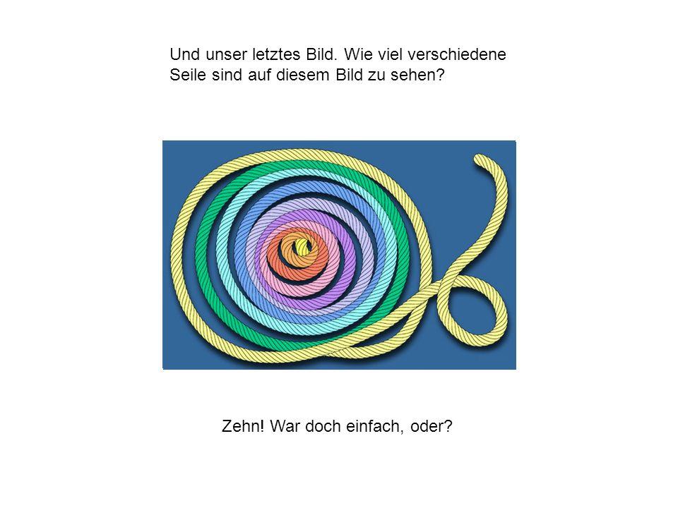 Und unser letztes Bild. Wie viel verschiedene Seile sind auf diesem Bild zu sehen? Zehn! War doch einfach, oder?