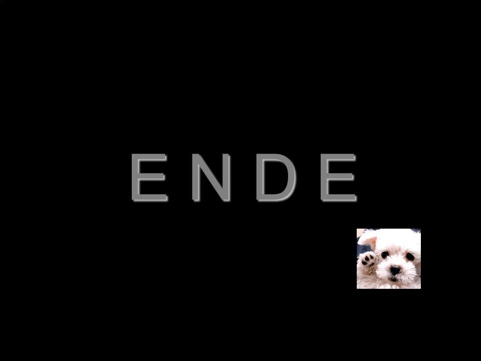 E N D E