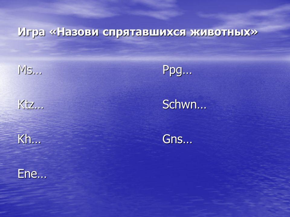 Игра «Назови спрятавшихся животных» Ms…Ppg… Ktz…Schwn… Kh…Gns… Ene…