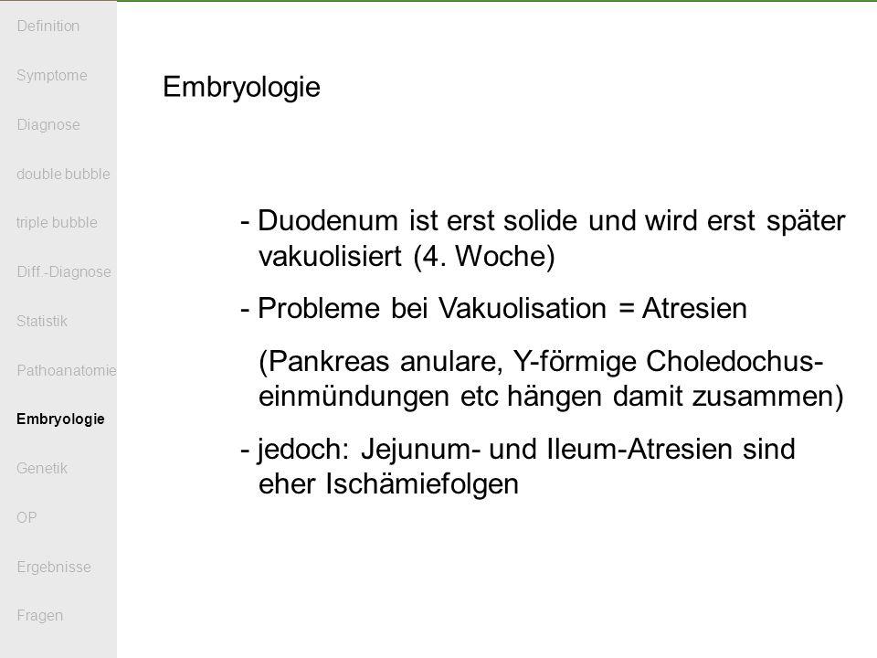 Embryologie - Duodenum ist erst solide und wird erst später vakuolisiert (4.