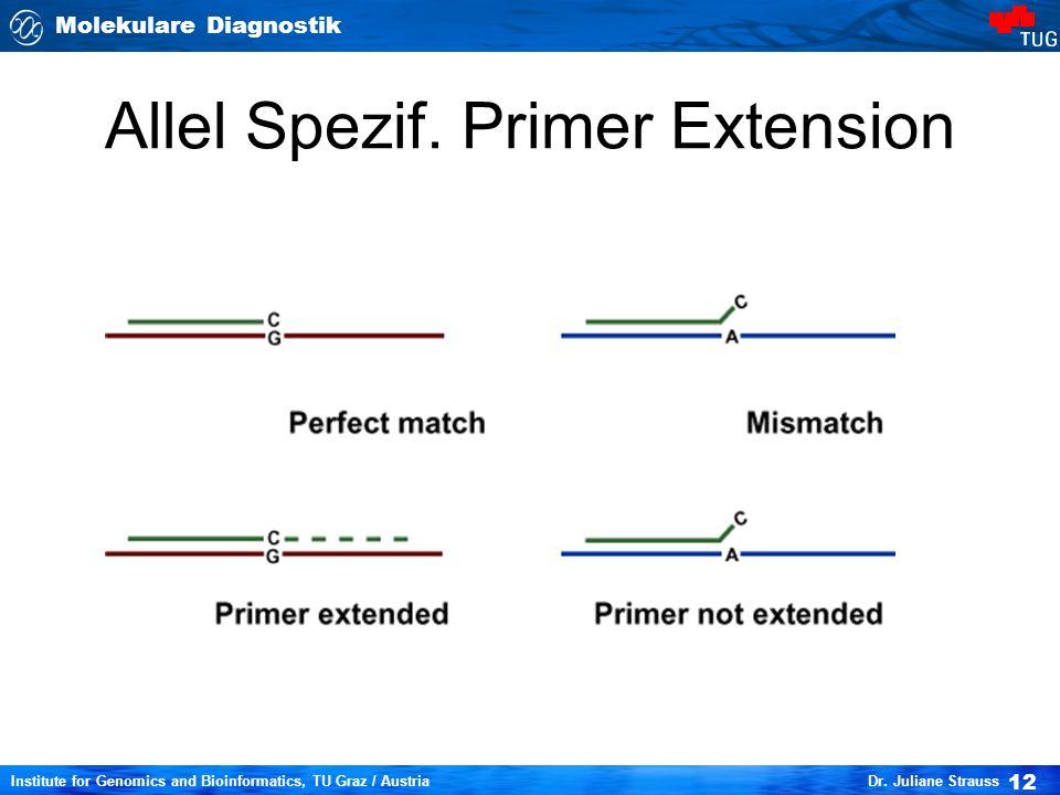 Molekulare Diagnostik 12 Institute for Genomics and Bioinformatics, TU Graz / Austria Dr. Juliane Strauss Allel Spezif. Primer Extension