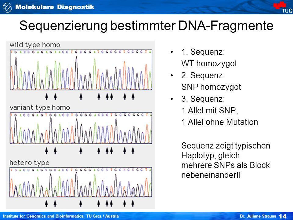Molekulare Diagnostik 14 Institute for Genomics and Bioinformatics, TU Graz / Austria Dr. Juliane Strauss Sequenzierung bestimmter DNA-Fragmente 1. Se