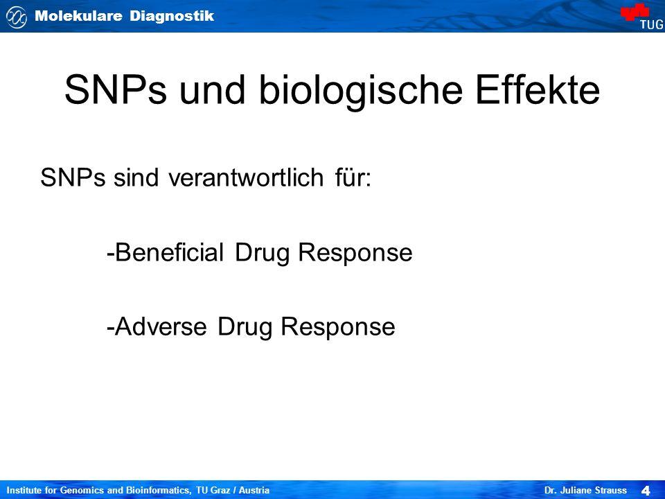 Molekulare Diagnostik 4 Institute for Genomics and Bioinformatics, TU Graz / Austria Dr. Juliane Strauss SNPs und biologische Effekte SNPs sind verant