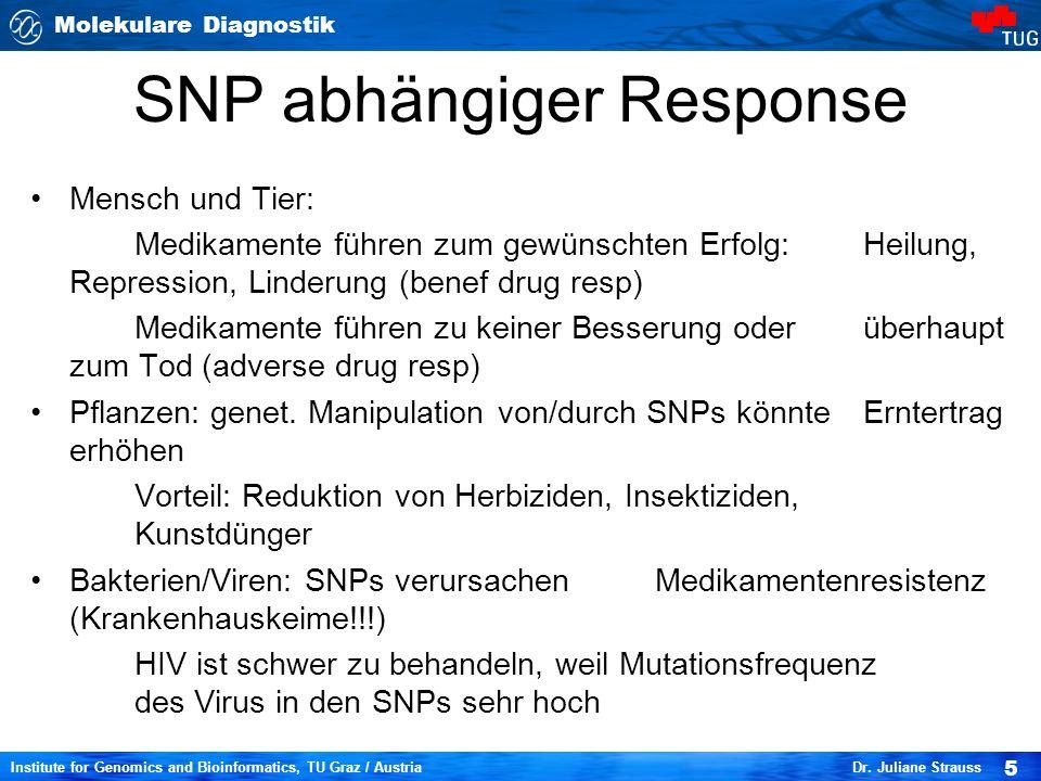 Molekulare Diagnostik 5 Institute for Genomics and Bioinformatics, TU Graz / Austria Dr. Juliane Strauss SNP abhängiger Response Mensch und Tier: Medi