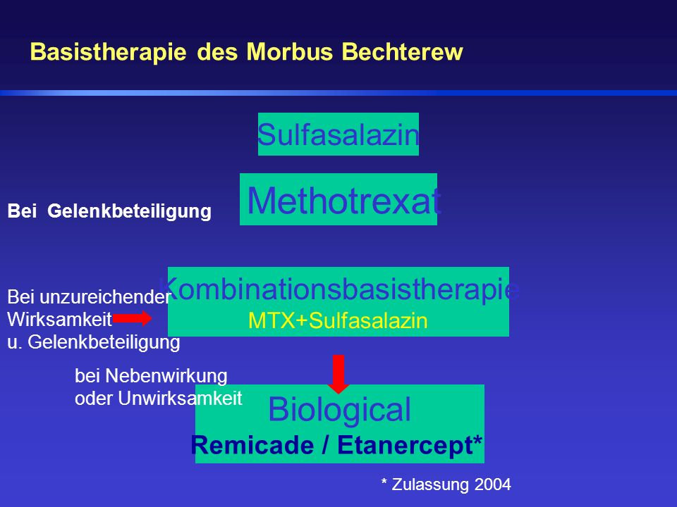 Basistherapie des Morbus Bechterew Methotrexat Kombinationsbasistherapie MTX+Sulfasalazin Sulfasalazin Biological Remicade / Etanercept* bei Nebenwirk