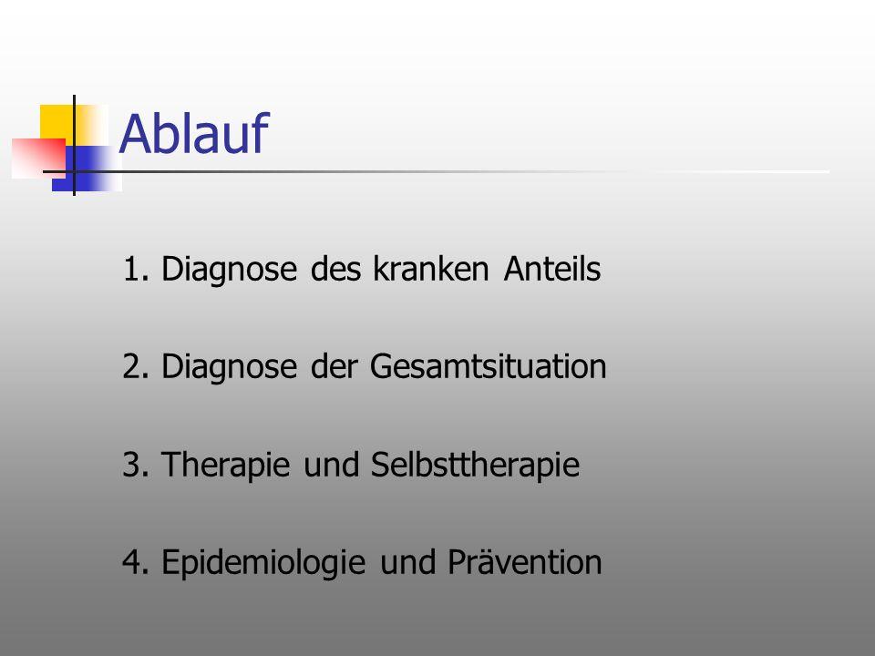 Ablauf 1. Diagnose des kranken Anteils 2. Diagnose der Gesamtsituation 3. Therapie und Selbsttherapie 4. Epidemiologie und Prävention