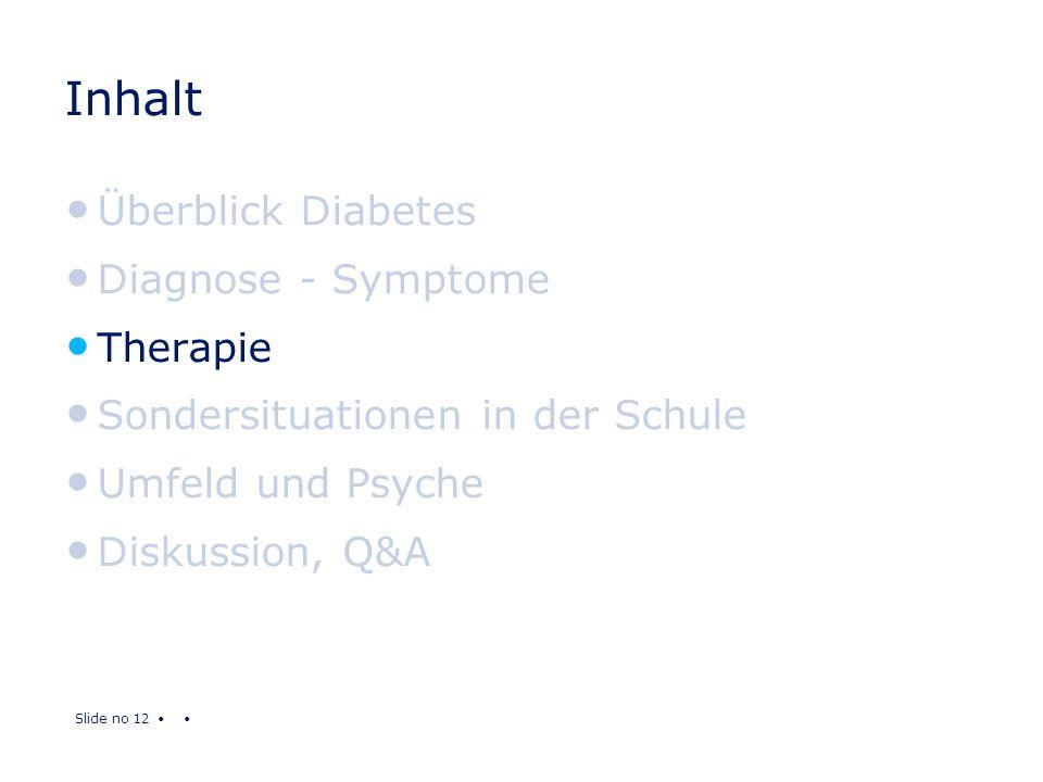 Slide no 12 Inhalt Überblick Diabetes Diagnose - Symptome Therapie Sondersituationen in der Schule Umfeld und Psyche Diskussion, Q&A