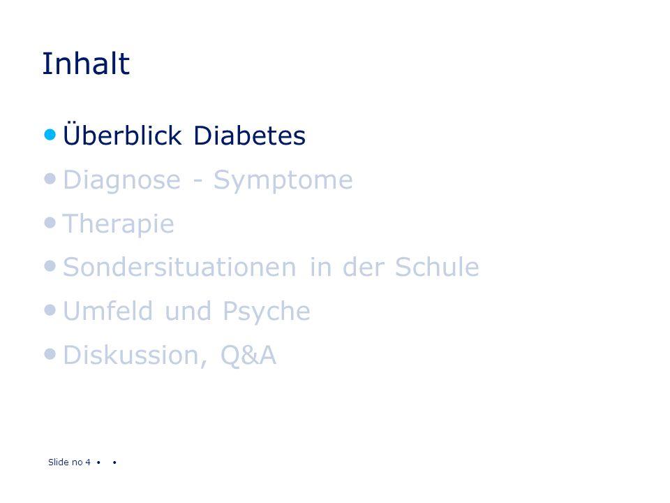 Slide no 4 Inhalt Überblick Diabetes Diagnose - Symptome Therapie Sondersituationen in der Schule Umfeld und Psyche Diskussion, Q&A