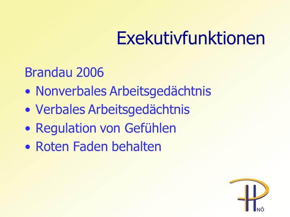 Exekutivfunktionen Brandau 2006 Nonverbales Arbeitsgedächtnis Verbales Arbeitsgedächtnis Regulation von Gefühlen Roten Faden behalten